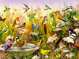 bird themed jigsaw puzzles