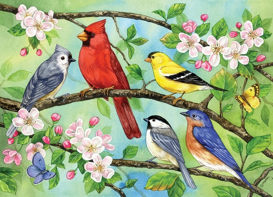Bloomin' Birds - 350pc Family Jigsaw Puzzle by Cobble Hill  			  					NEW - image main