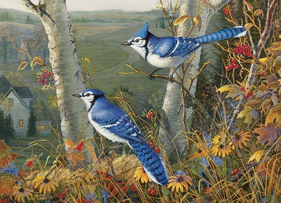 Blue Jays - 1000pc Jigsaw Puzzle by Cobble Hill  			  					NEW