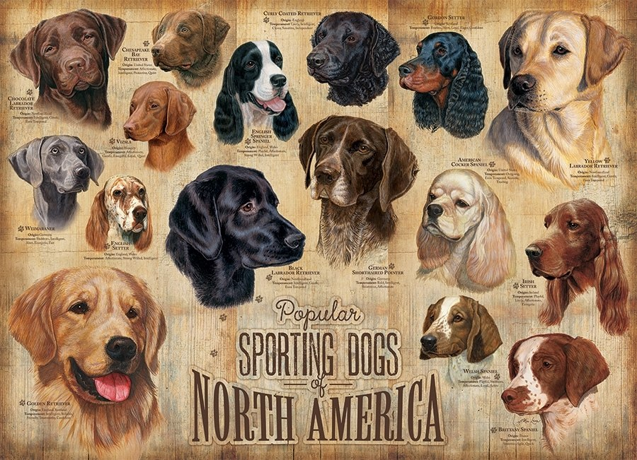 Sporting Dogs - 1000pc Jigsaw Puzzle by Cobble Hill  			  					NEW