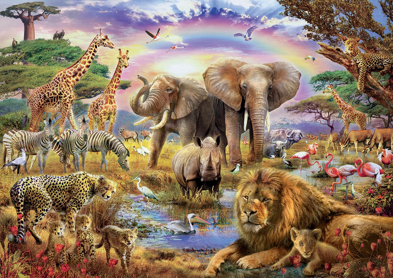 Watering Hole Under the Rainbow - 3000pc Jigsaw Puzzle By Educa  			  					NEW