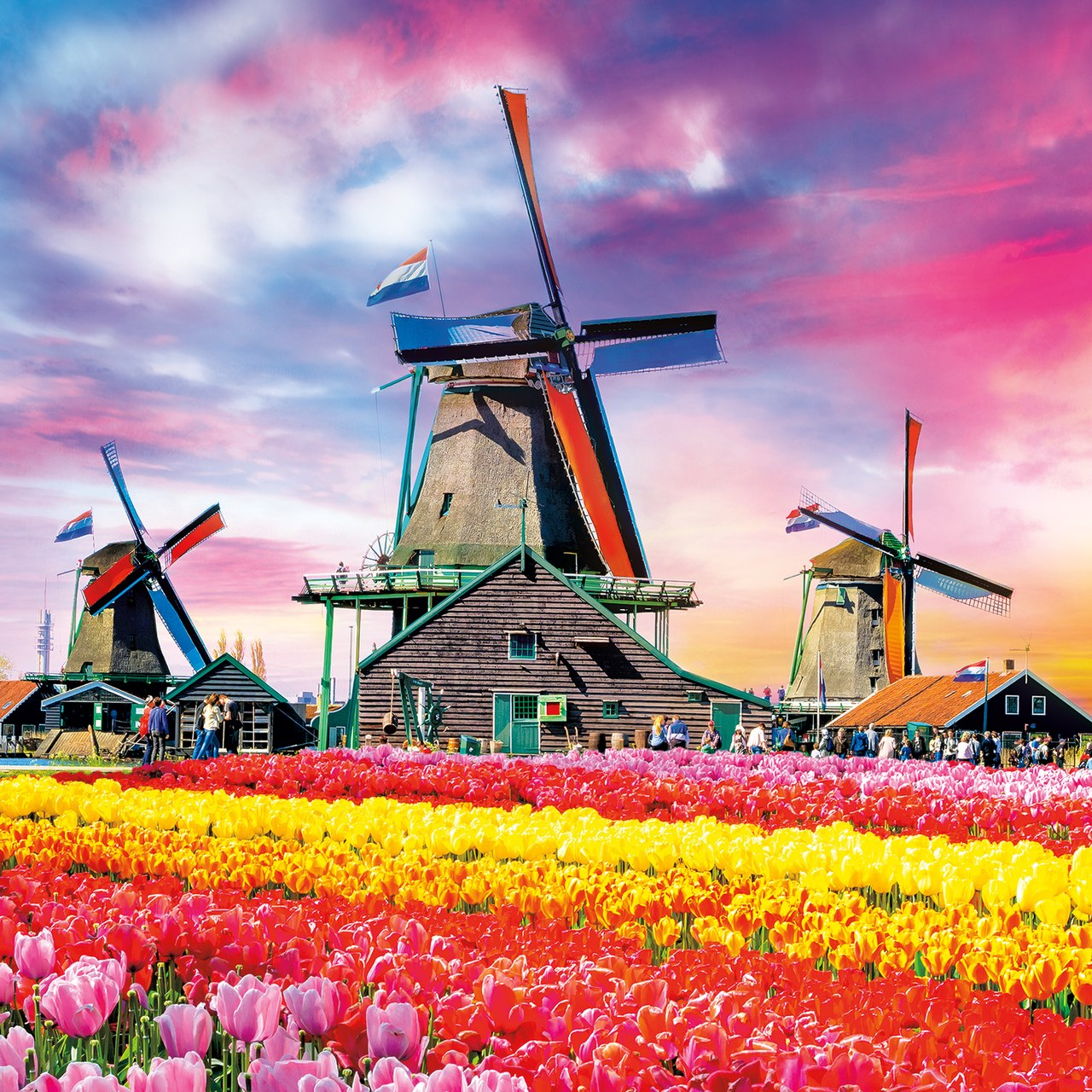 Tulips in Bloom - 300pc Large Format Jigsaw Puzzle by Buffalo Games  			  					NEW