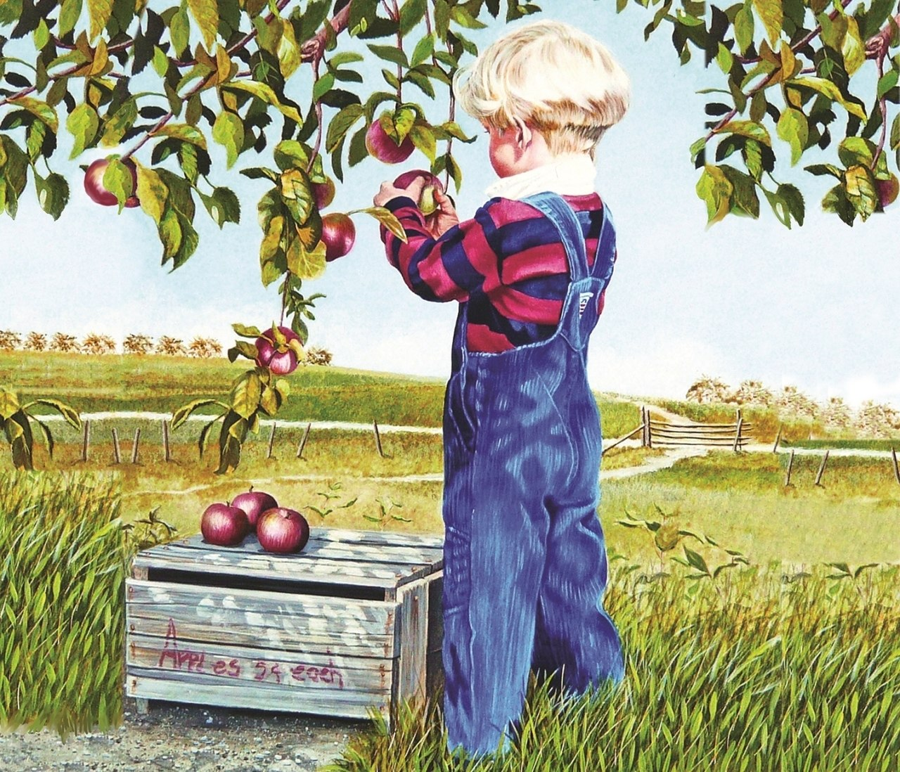 Apple Picking - 550pc Jigsaw Puzzle By Sunsout  			  					NEW