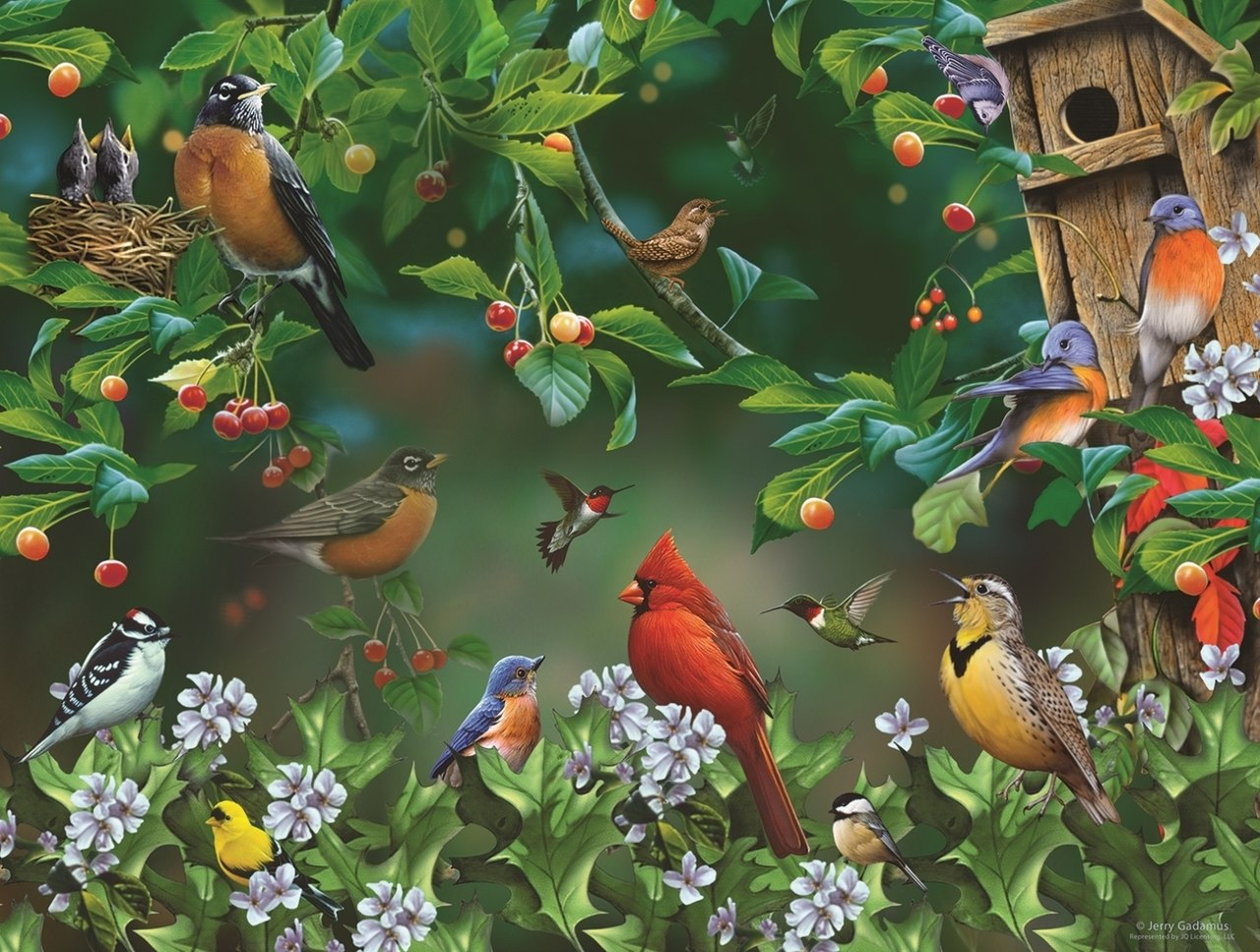 Bird Festival - 300pc Jigsaw Puzzle By Sunsout  			  					NEW