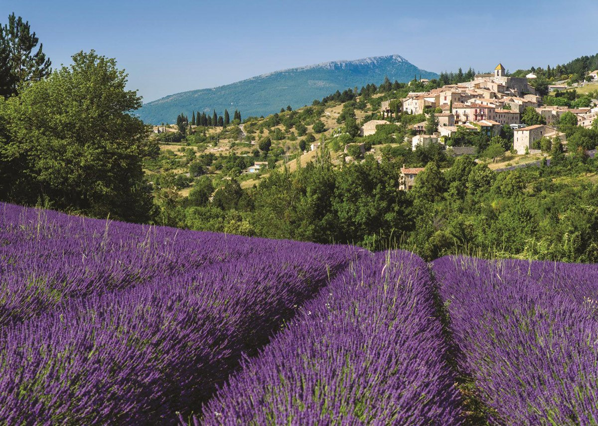 Provence, Aurel - 500pc Jigsaw Puzzle By Jumbo  			  					NEW