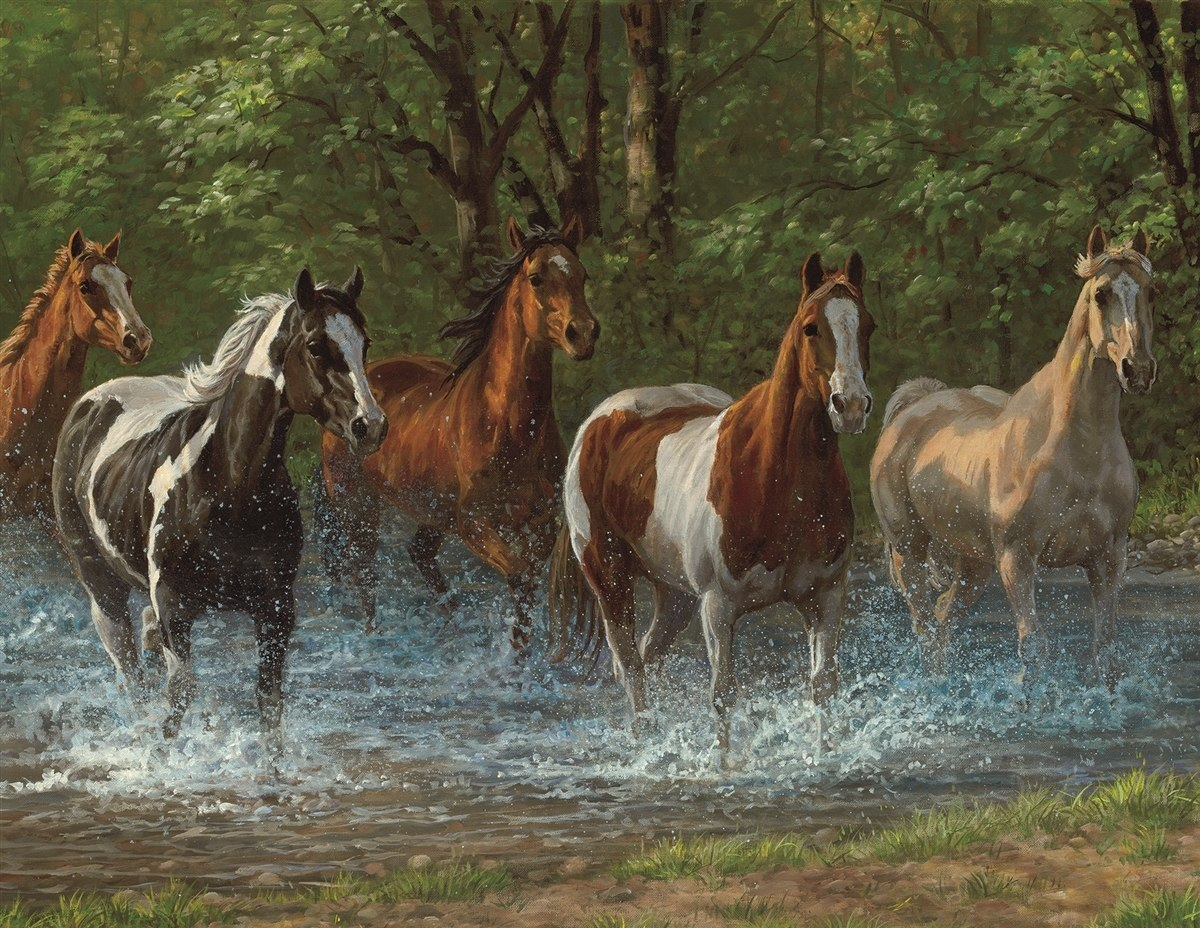 Summer Creek - 500pc Jigsaw Puzzle By Springbok  			  					NEW