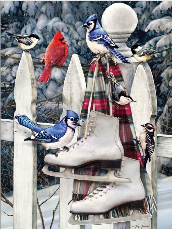 Birds with Skates - 500pc Jigsaw Puzzle By Cobble Hill  			  					NEW
