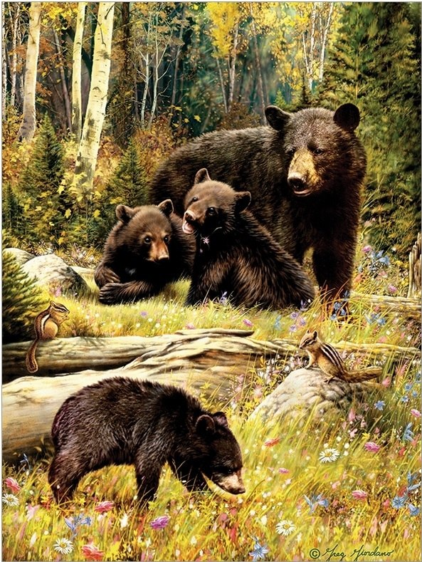 Bears - 500pc Jigsaw Puzzle by Cobble Hill  			  					NEW