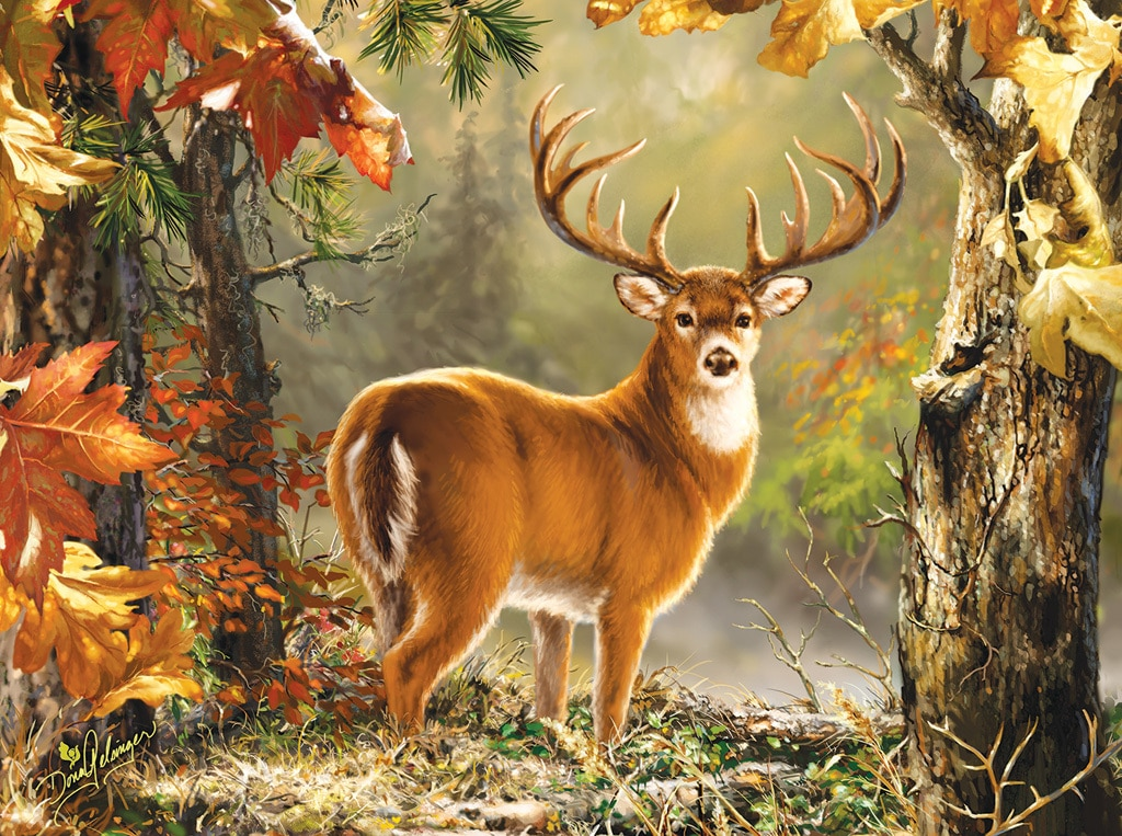 Whitetail - 1000pc Jigsaw Puzzle by SunsOut