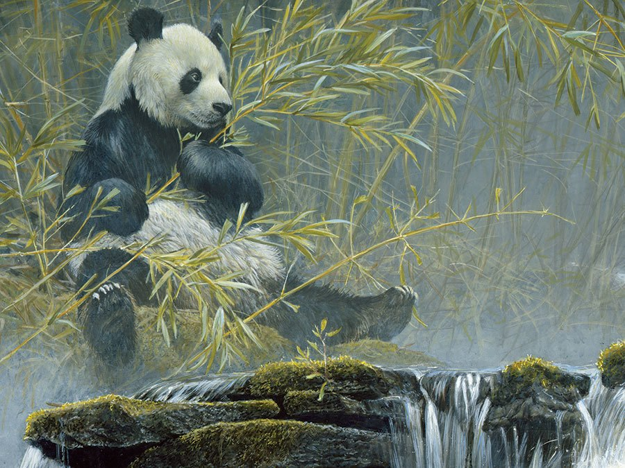 Giant Panda - 500pc Jigsaw Puzzle by Cobble Hill