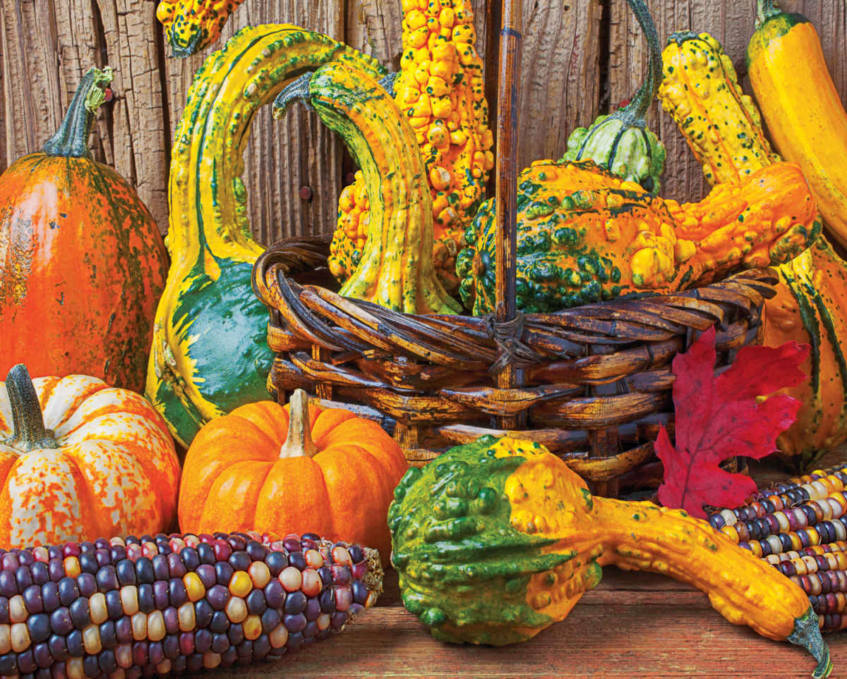 Harvest Colors - 1000pc Jigsaw Puzzle By Springbok