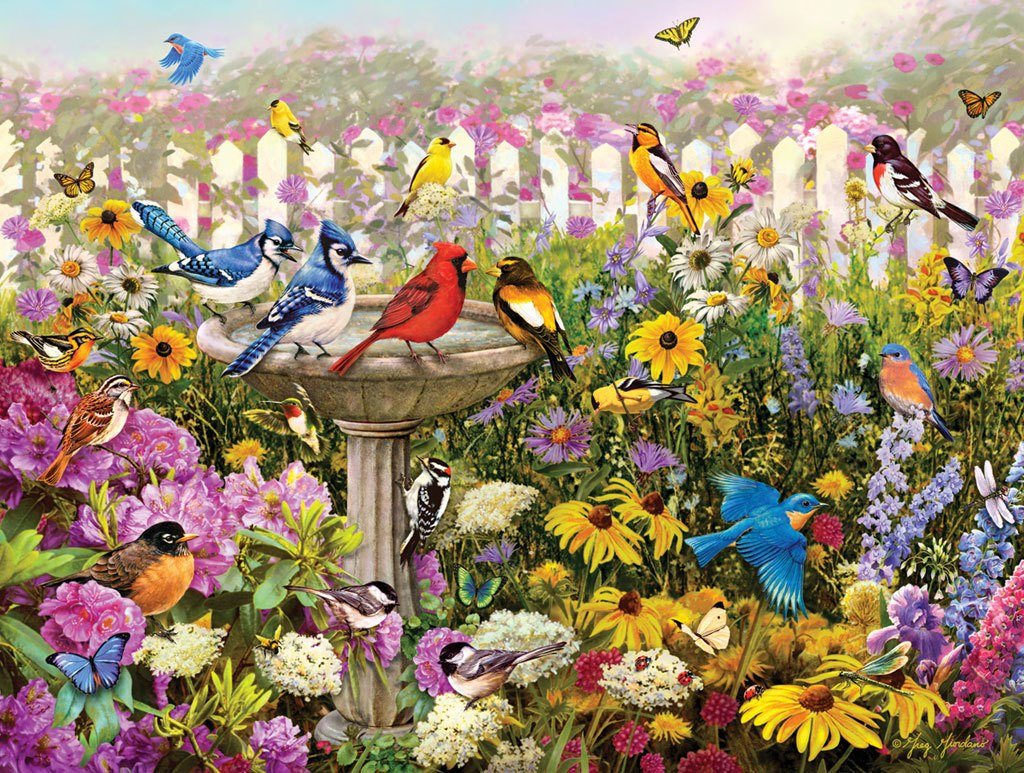 Birds of Summer - 550pc Jigsaw Puzzle By White Mountain