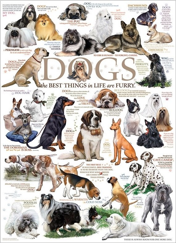 Dog Quotes - 1000pc Jigsaw Puzzle by Cobble Hill  			  					NEW