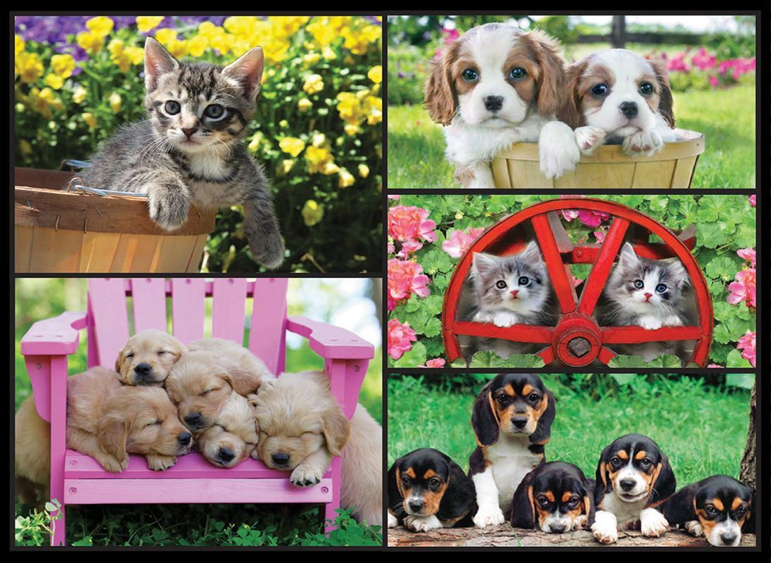 Kodak: Kittens & Puppies - 550pc Jigsaw Puzzle by Lafayette Puzzle Factory  			  					NEW