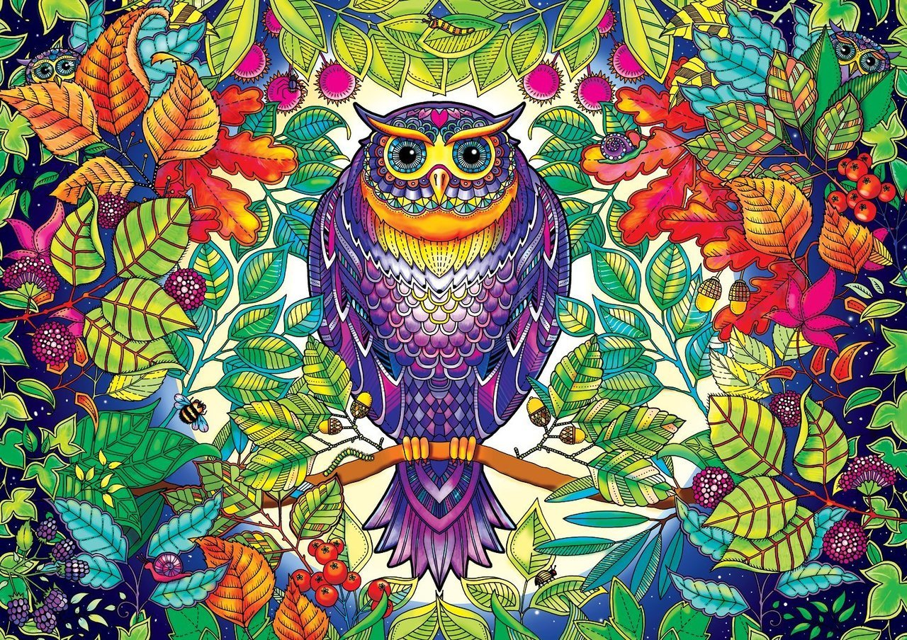 SECRET GARDEN: Johanna Basford FOREST OWL - 500pc Coloring Book Jigsaw Puzzle by Buffalo Games