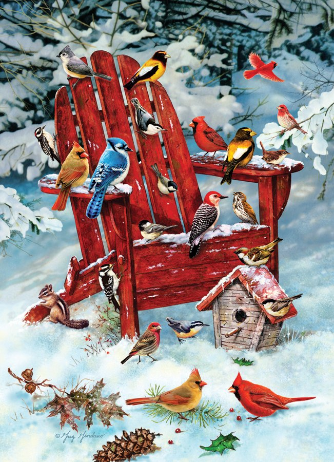 Adirondack Birds - 1000pc Jigsaw Puzzle by Jack Pine