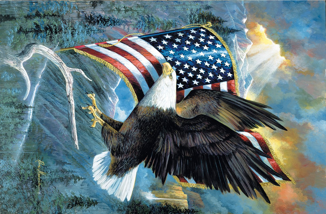 American Pride - 35pc Jigsaw Puzzle by Sunsout  			  					NEW