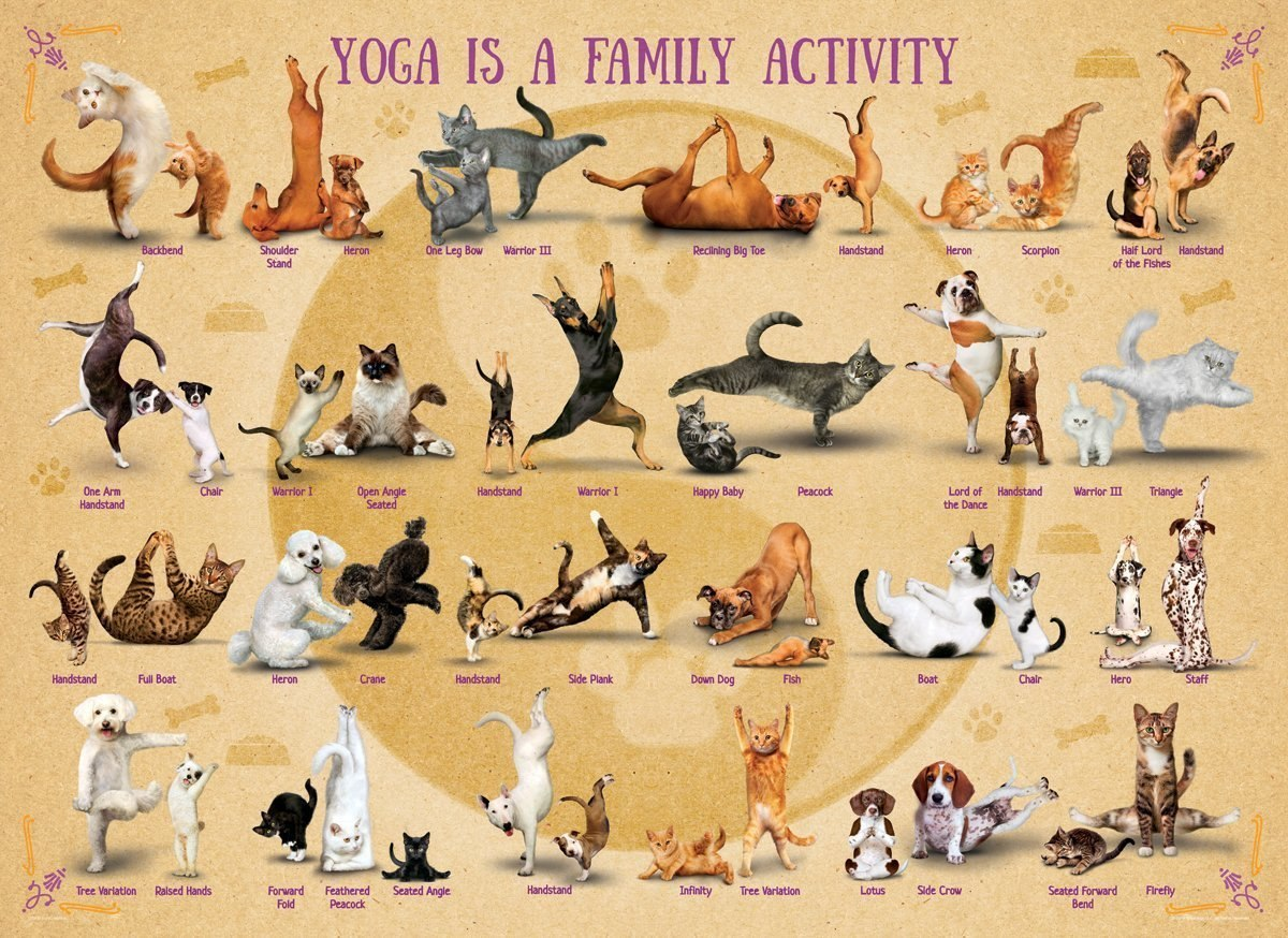 Yoga is a Family Activity - 500pc Jigsaw Puzzle by Eurographics  			  					NEW