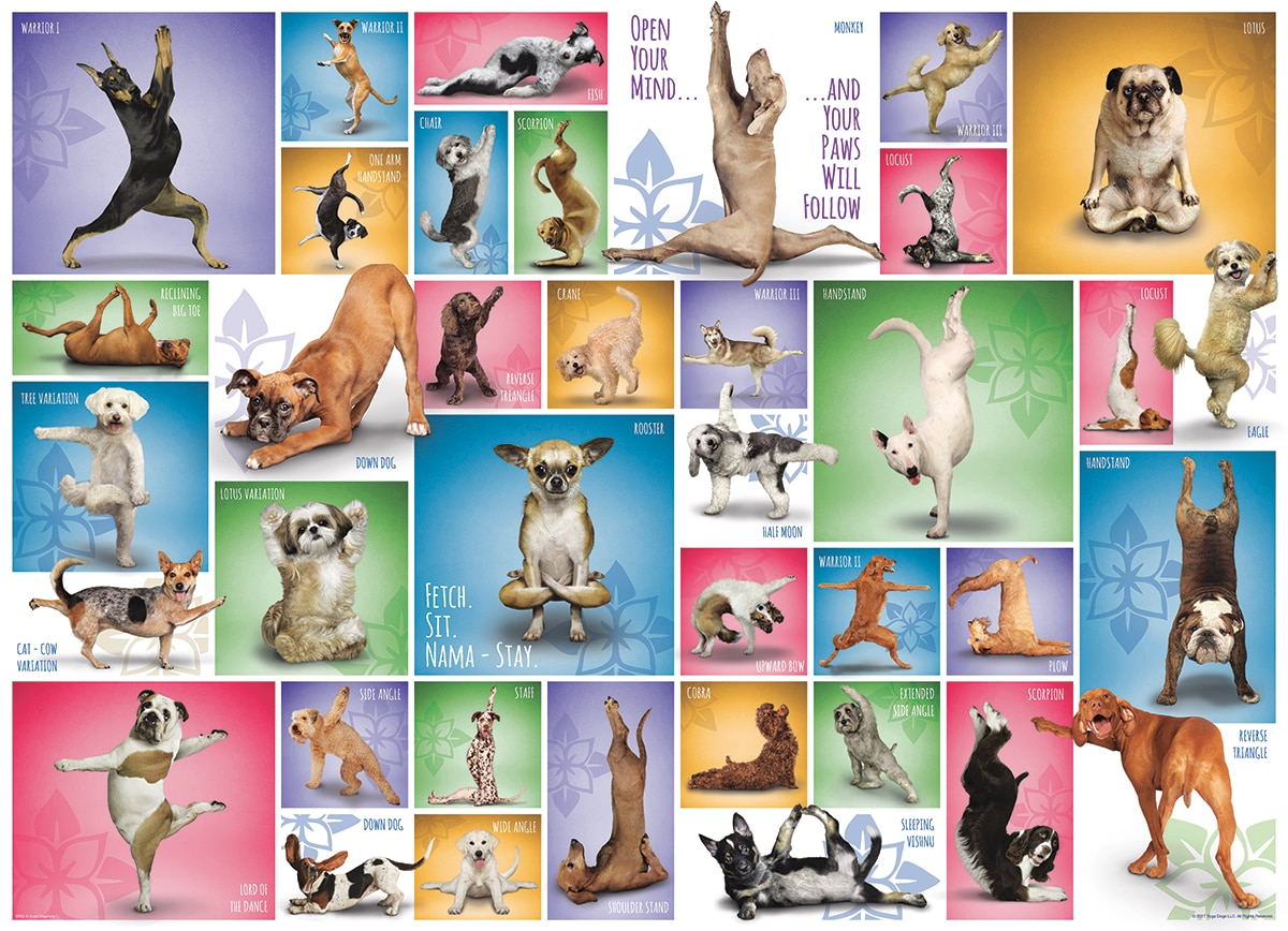 Yoga Dogs - 1000pc Jigsaw Puzzle by Eurographics