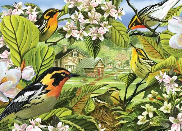 Blackburnian Warblers - 500pc Jigsaw Puzzle By Cobble Hill
