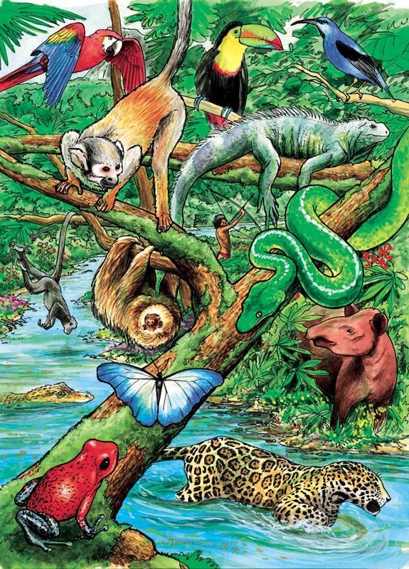 Life in a Tropical Rainforest - 35pc Tray Puzzle by Cobble Hill