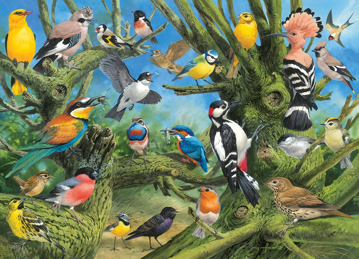 Garden Birds by Joahn Francis - 1000pc Jigsaw Puzzle by Eurographics