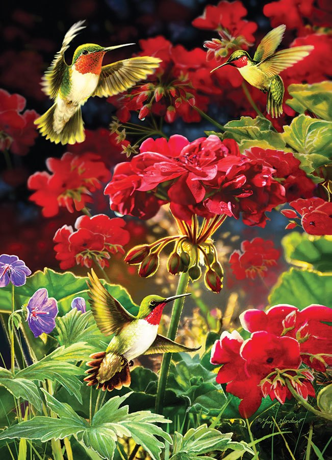 Ruby Geraniums - 1000pc Jigsaw Puzzle by Cobble Hill