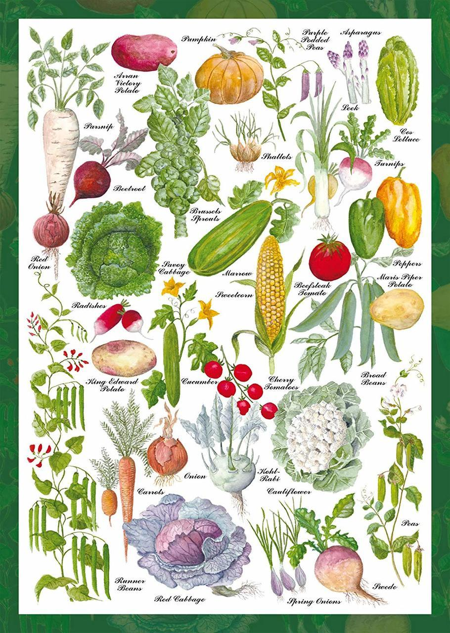 Vegetable Garden - 1000pc Jigsaw Puzzle by Schmidt  			  					NEW