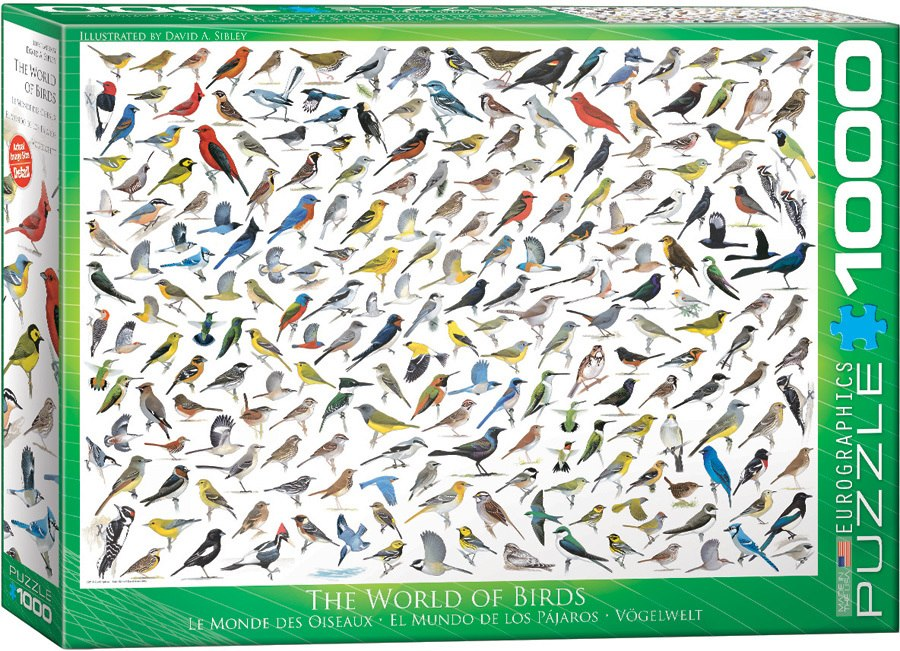 The World of Birds - 1000pc Jigsaw Puzzle by Eurographics