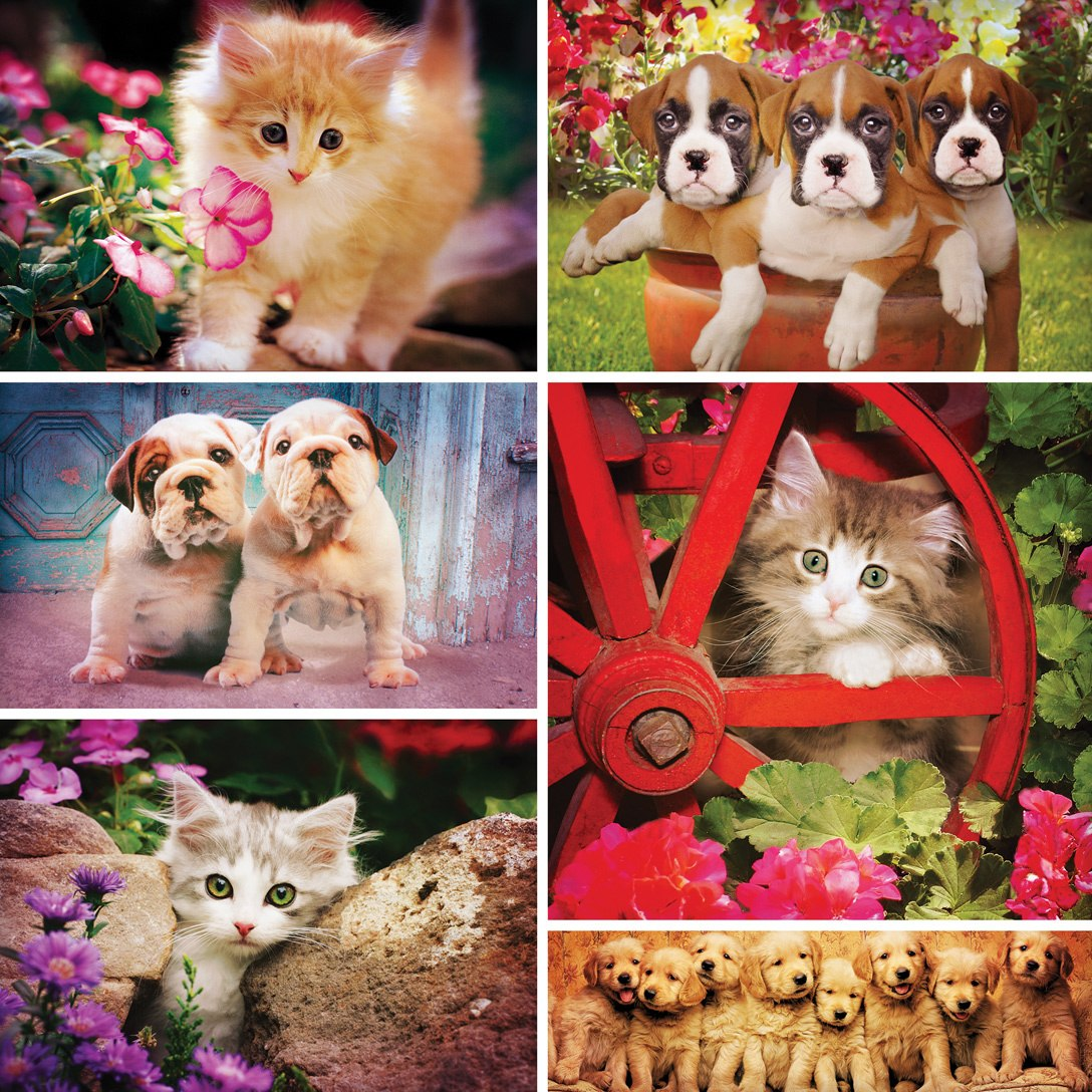 Instapaws: #FuzzyFriends - 500pc Square Jigsaw Puzzle by Masterpieces