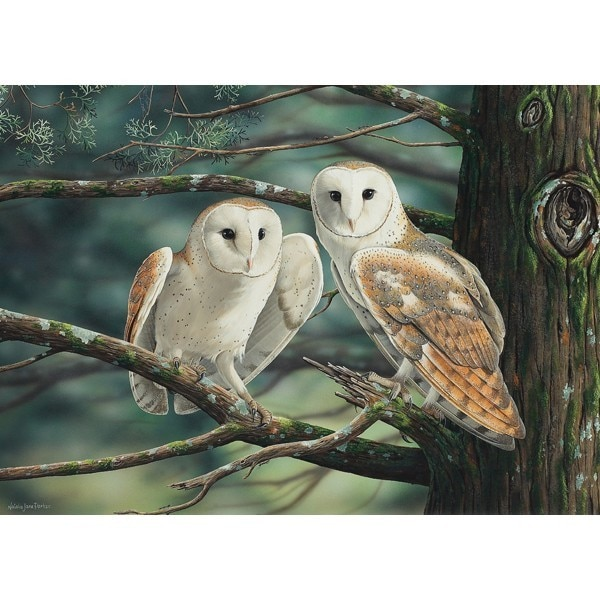 Wild Wings: At Dusk We Fly - 1000pc Jigsaw Puzzle by Holdson  			  					NEW