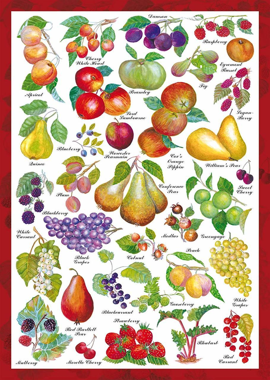 Fruits - 1000pc Jigsaw Puzzle by Schmidt  			  					NEW