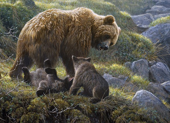 Grizzly and Cubs - 400pc Family Style Jigsaw Puzzle By Cobble Hill