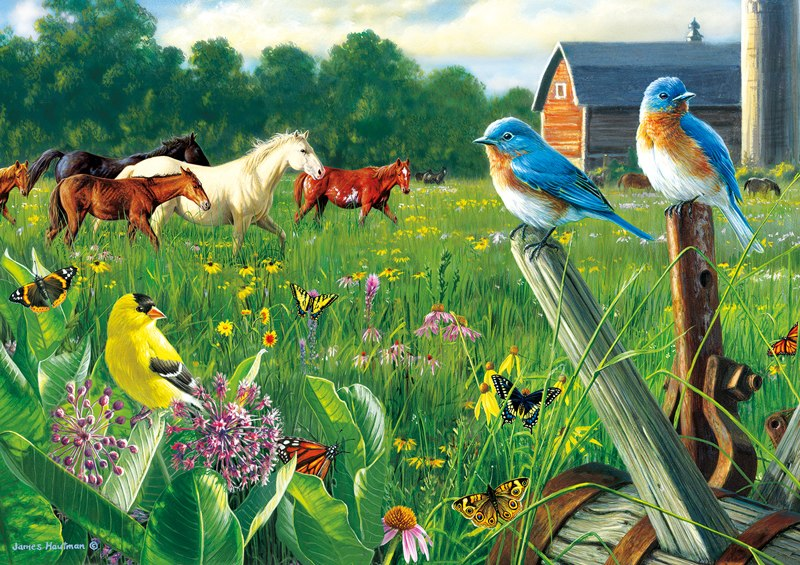 Hautman Brothers: Country Meadow - 300pc Jigsaw Puzzle by Buffalo Games - image main