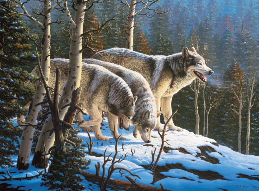 Wolves: Wildlife - 1000pc Jigsaw Puzzle by Ceaco