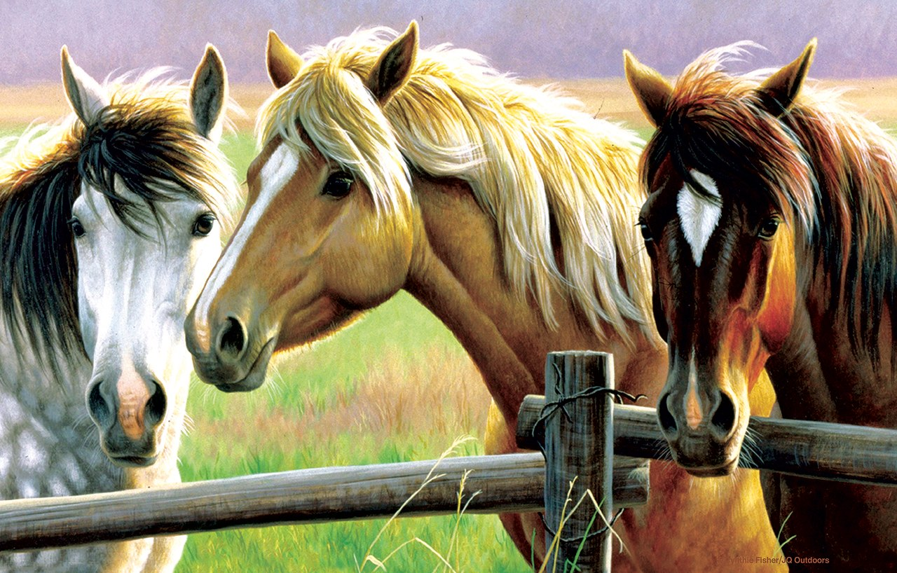 Horse Fence - 1000pc Jigsaw Puzzle By Sunsout  			  					NEW