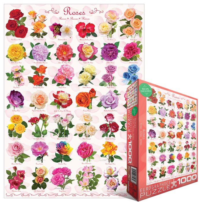 Roses - 1000pc Jigsaw Puzzle by Eurographics