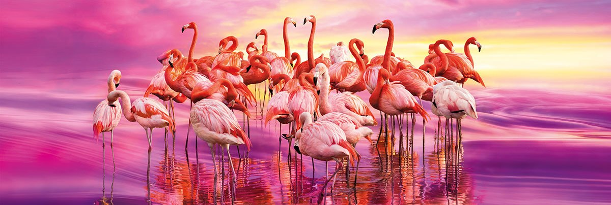 Flamingo Dance - 1000pc Panoramic Jigsaw Puzzle by Clementoni  			  					NEW