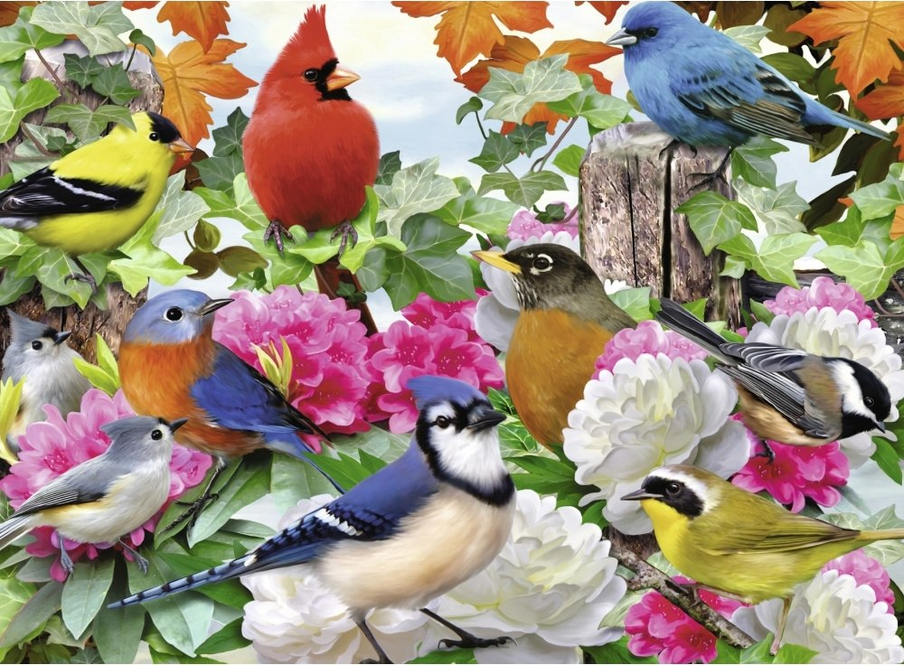 Garden Birds - 500pc Jigsaw Puzzle By Ravensburger - image main